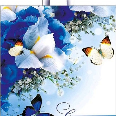 Пакет с петлевой ручкой «Синяя симфония» 44*40см 50/300