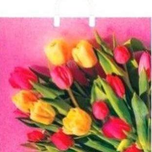 Пакет с пластиковой петлевой ручкой «Царство тюльпанов» 38*35см 10/100