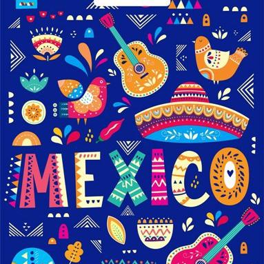 Пакет с вырубной ручкой «Мехико» 31*40см 50/1000
