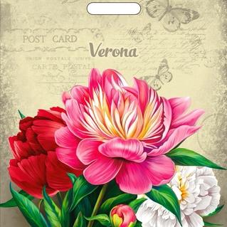Пакет с вырубной ручкой «Верона» 38*47см 50/1000