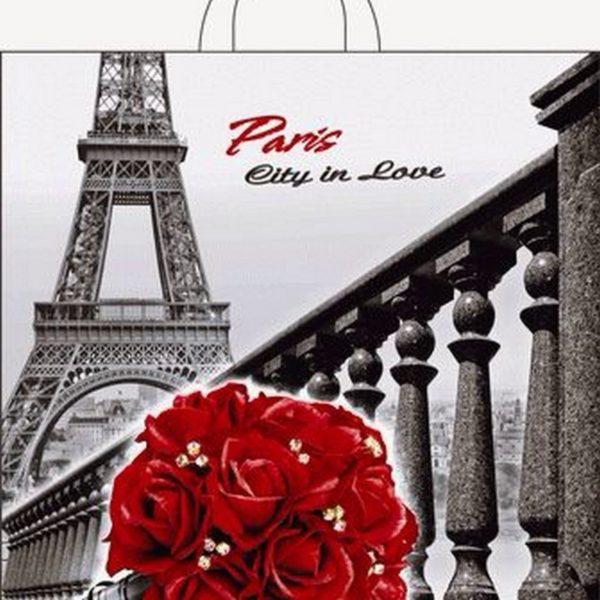 Пакет с петлевой ручкой «Город любви» 40*36см 50/500