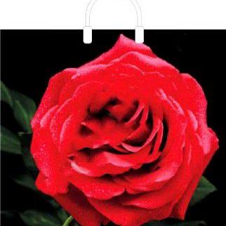 Пакет с пластиковой петлевой ручкой «Красная роза» 38*34+3см 1/10/100