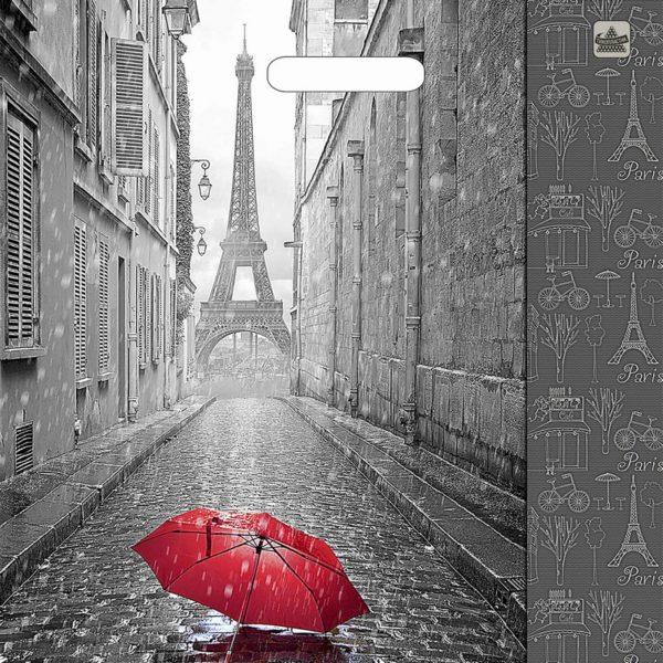 Пакет с вырубной ручкой «Мой Париж» 38*45см 50/500