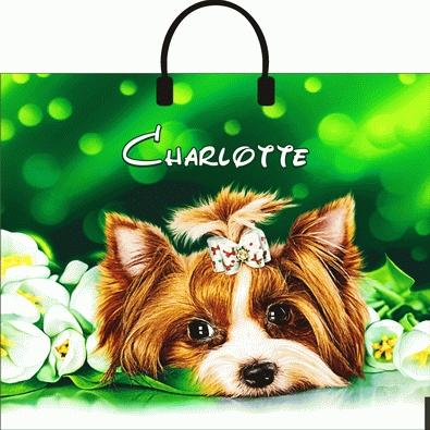 Пакет с пластиковой петлевой ручкой «Шарлотта» 38*35см 10/100