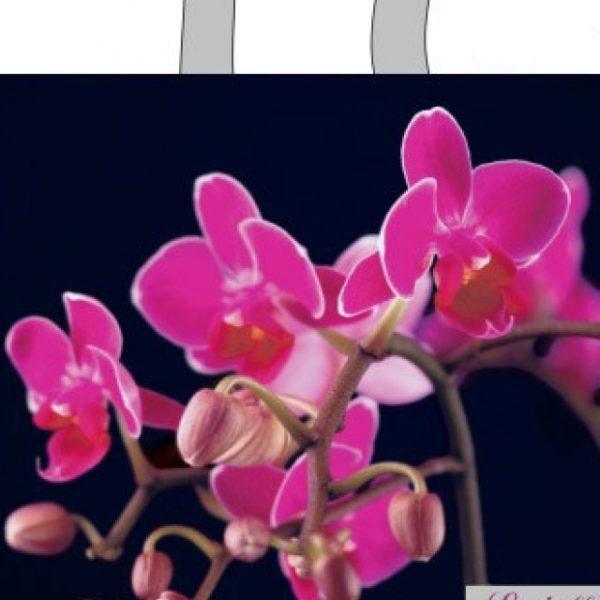 Пакет с петлевой ручкой «Ветка орхидеи» 34*37см 25/400