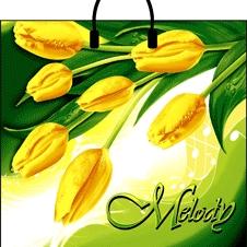 Пакет с пластиковой петлевой ручкой «Мелодия» 38*35см 10/100