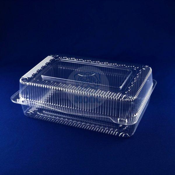 Контейнер пищевой одноразовый пластиковый с крышкой РК-25 1/160