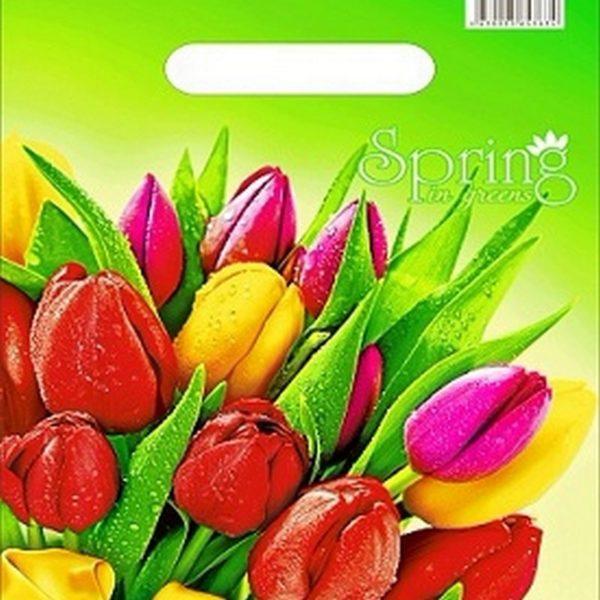 Пакет с вырубной ручкой «Весна» 20*30см 100/2000