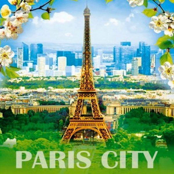 Пакет с петлевой ручкой «Цветущий город» 38*42см 25/500